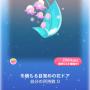 ポケコロガチャ冬の夜の夢(コロニー007冬積もる目覚めの花ドア)