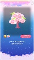 ポケコロガチャ大正洋館の桜午後(001【コロニー】うららか大正桜の木)