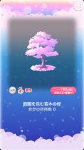 ポケコロガチャ桜姫の秘密の庭(インテリア003庭園を包む若木の桜)