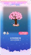 ポケコロVIP復刻ガチャ春爛漫♪お花見茶屋(インテリア002お花見茶屋の桜)