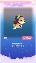 ポケコロガチャ月夜の見習い忍者修行(015【コロニー】剣術修行わんこ)