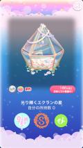 ポケコロ福袋シュシュブランシュ(011【コロニー】光り輝くエクランの星)