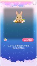 ポケコロガチャいっぱいうさぎ(006【コロニー】ひょっこり飛び出しうさぎ)