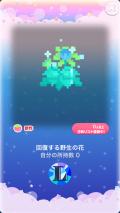 ポケコロガチャポケコロクエスト2(013【コロニー】回復する野生の花)