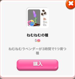 ポケコロきまぐれ商店期間限定アイテム(ねむねむの種)