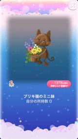 ポケコロスクラッチアーリーサマーガーデン(012【インテリア】ブリキ猫のミニ鉢)